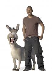 Stand-up comedy: Eddie Murphy - Career 2000 - 2009