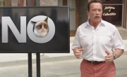 Stand up comedy Video Arnold Schwarzenegger's funny promo video for YouTube's Comedy Week