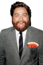 Stand up Comedy: Zack Galifianakis to produce new Comedy Central show with Brody Stevens